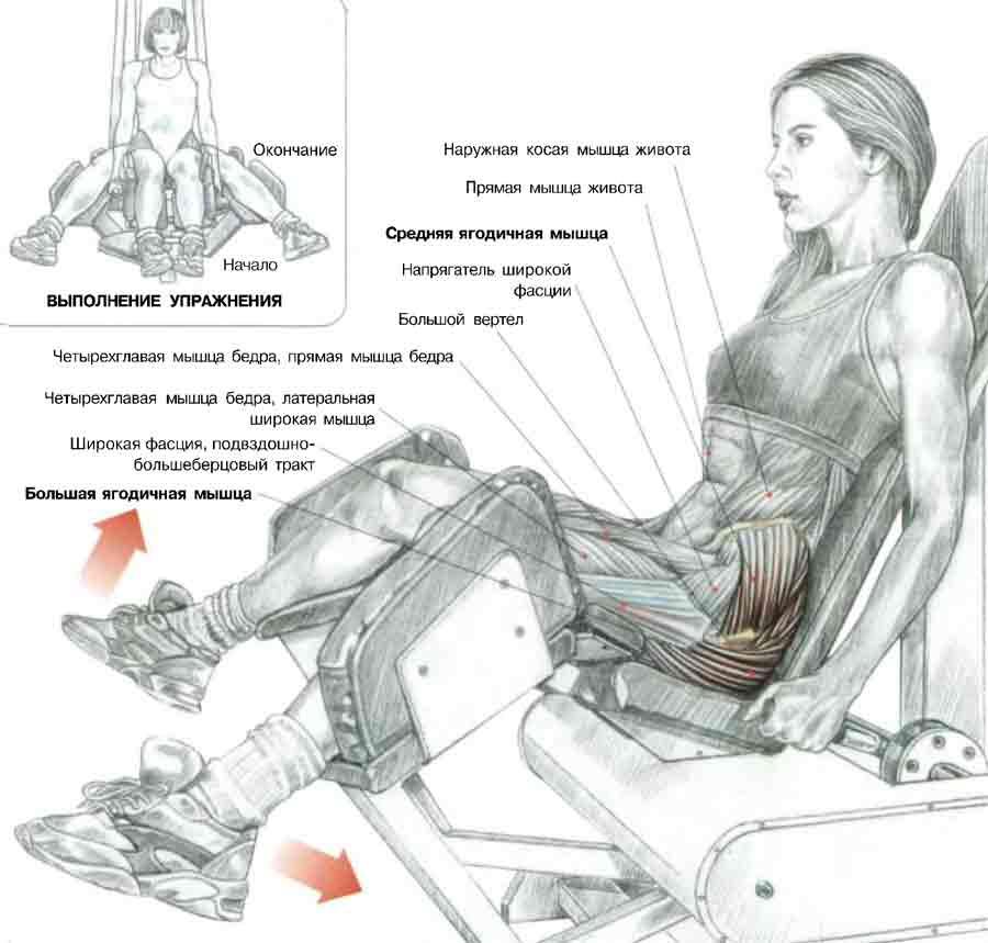 Сидя на тренажере: - сделать вдох и развести бедра с максимально возможной амплитудой.  Если спинка тренажера сильно...